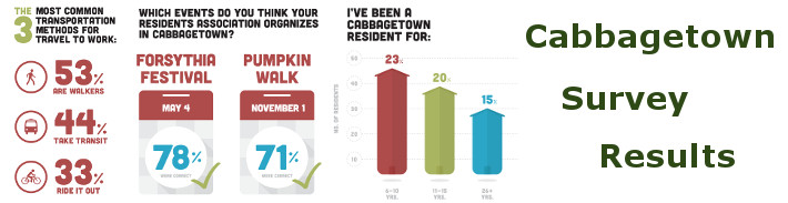 Cabbagetown Survey Results