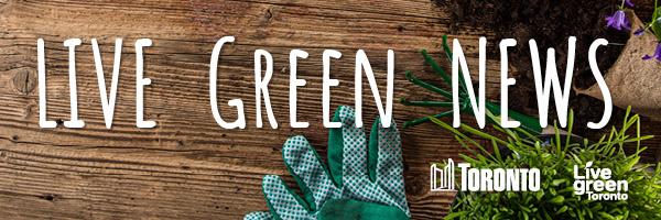 Live green news logo